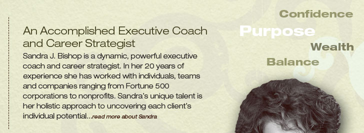 An Accomplished Career Strategist and Executive Coach Sandra J. Bishop is a dynamic, powerful executive coach and career strategist. In her 20 years of experience she has worked with individuals, teams and companies ranging from Fortune 500 corporations to nonprofits. Sandra's unique talent is her holistic approach to uncovering each client's individual potential.